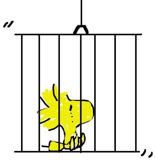 prigione221